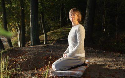 Svaroopa® Yoga in Europe
